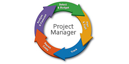 Manager de Proiect IT